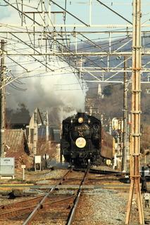 7DK_1981.JPG