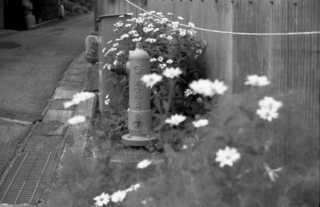 無題-スキャンされた画像-10a.JPG